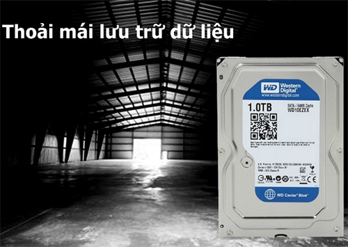 Ổ cứng HDD Western Digital Blue 1TB 3.5